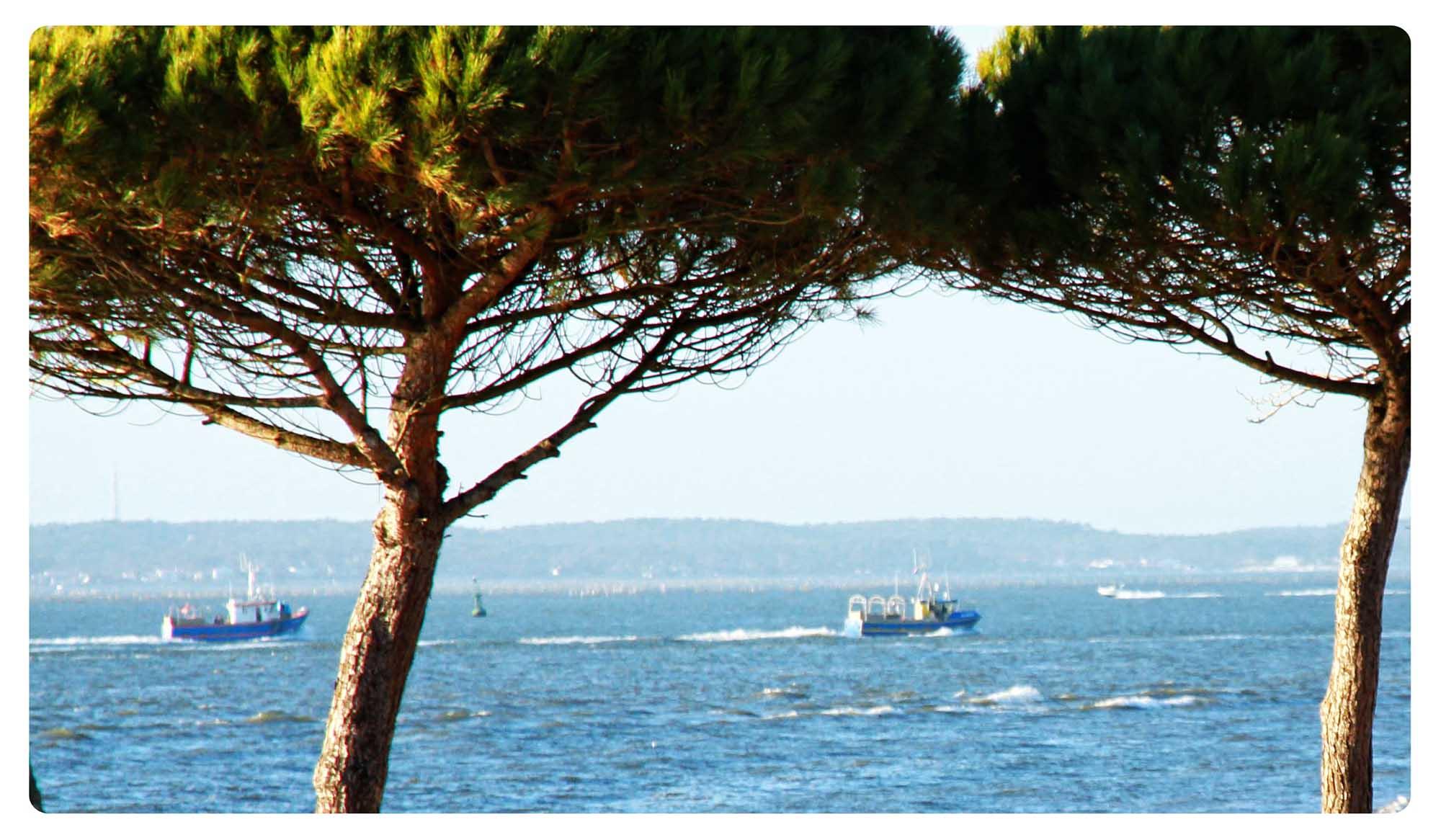 bateau arcachon