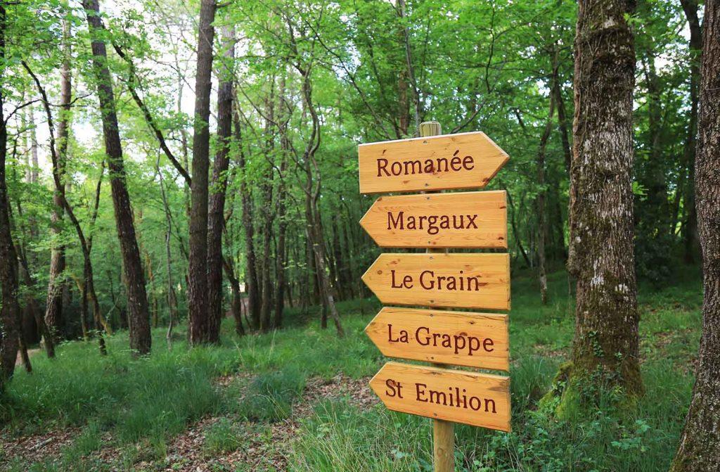 cabane-la-romaningue-foret