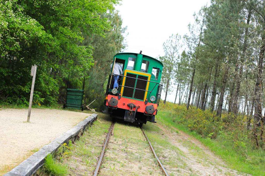 train-vert-ecomusee-marqueze
