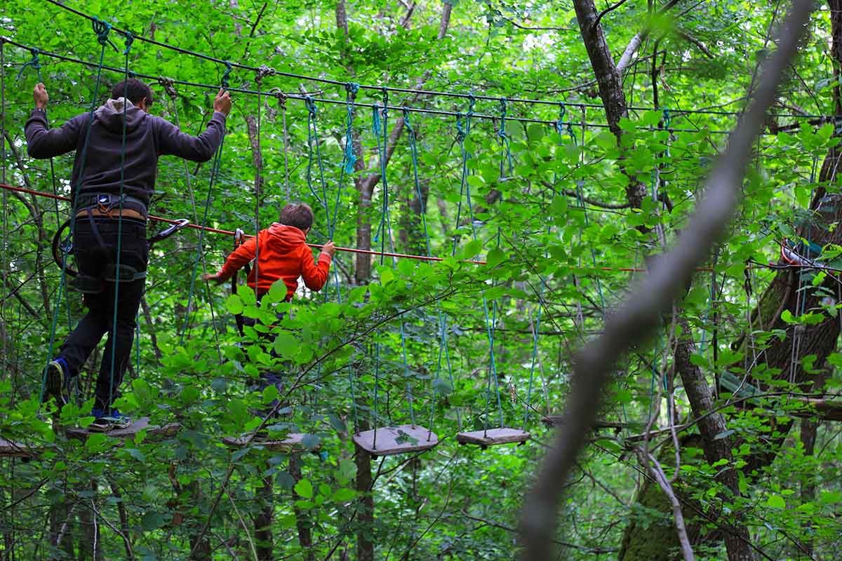 Parc aventure Arbor et Sens
