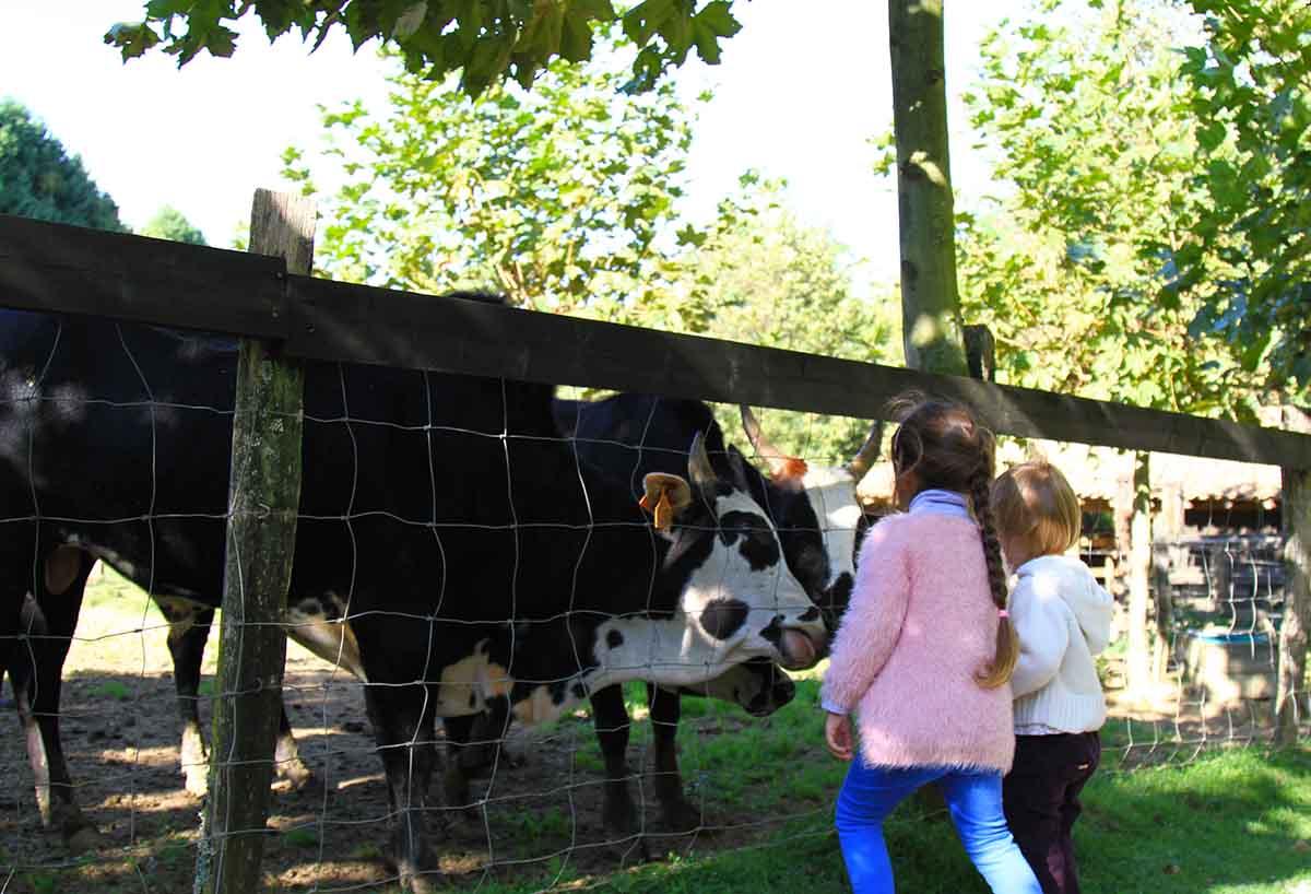 Le parc animalier Etxola à Sare