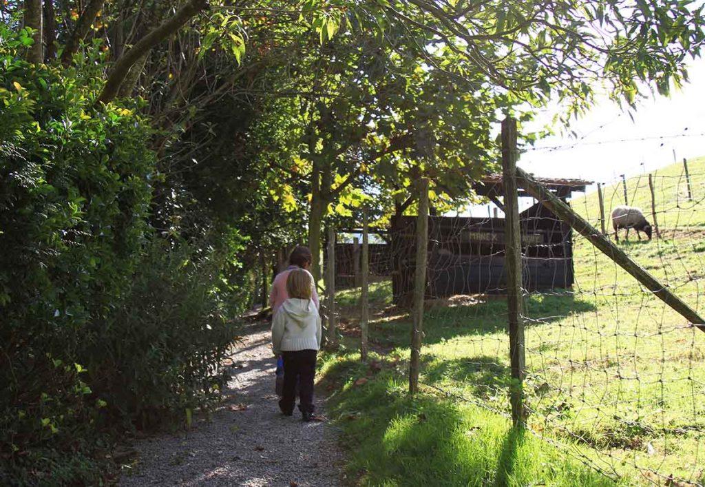 parc-animalier-au-pays-basque