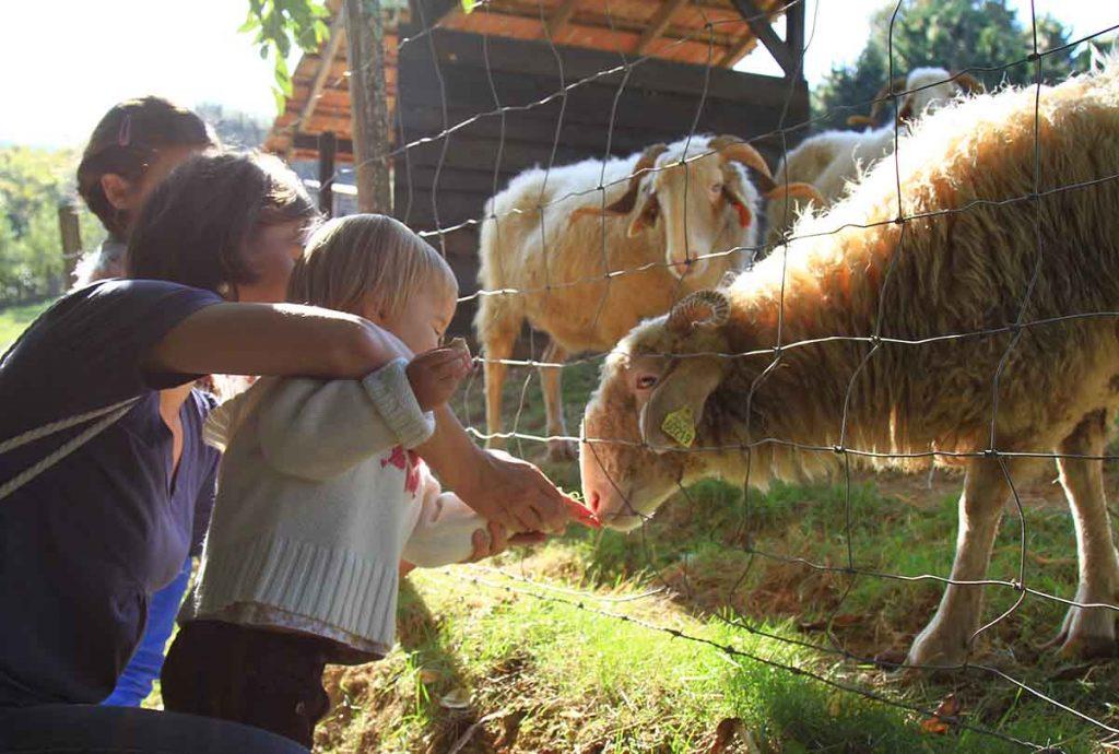 parc-animalier-etxola