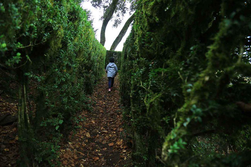 labyrinthe-jardins-marqueyssat